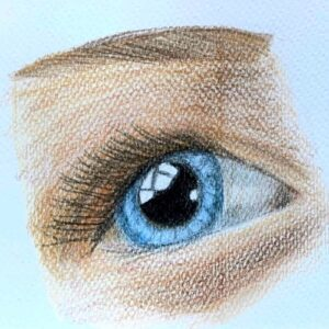 Day 9 - Coloured pencil drawing of an eye